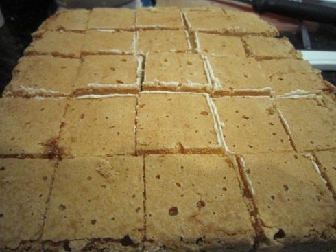 Sponge cut in squares